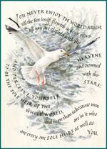 *spring2013 Animals Author: Thomas Traherne Birds Illustrator: Marie Angel Inspiration Literature Nature'