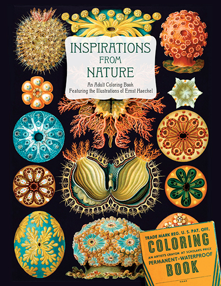 Inspirations from Nature:An Adult Coloring Book Featuring the Illustrations of Ernst Haeckel | Coloring Twenty-four inspirational designs from nature to color.