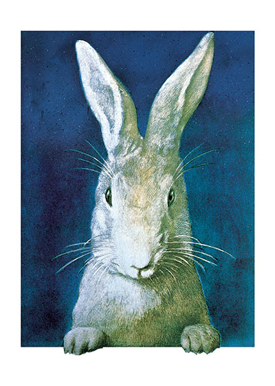 Rabbit Lookingt | Animal Friends Animals Art Prints These prints are made at our location in Seattle, WA. They have a thick, white backing board and are sealed in clear bags. Each is suitable for framing at 11 inches x 14 inches or can be used as is for wall display. Our goal is to bring back to life these wonderful illustrations from old-fashioned, children's books and from early advertising art.