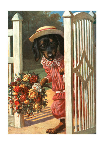 Dog With Bouquet | Delightful Dogs Animals Art Prints These prints are made at our location in Seattle, WA. They have a thick, white backing board and are sealed in clear bags. Each is suitable for framing at 11 inches x 14 inches or can be used as is for wall display. Our goal is to bring back to life these wonderful illustrations from old-fashioned, children's books and from early advertising art.