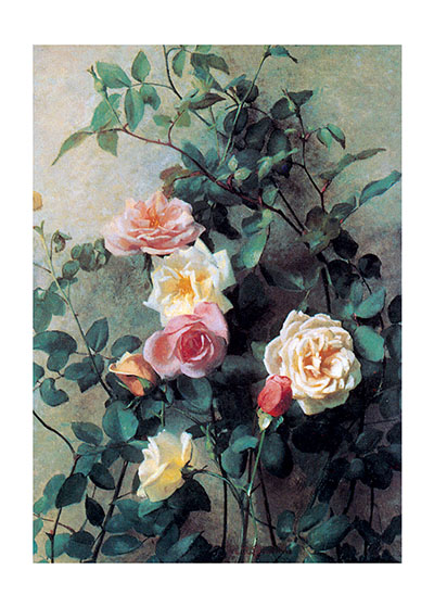"Climbing Roses | Flowers Art Prints ""These prints are made at our location in Seattle, WA. They have a thick, white backing board and are sealed in clear bags. Each is suitable for framing at 11 inches x 14 inches or can be used as is for wall display. Our goal is to bring back to life these wonderful illustrations from old-fashioned, children's books and from early advertising art."""