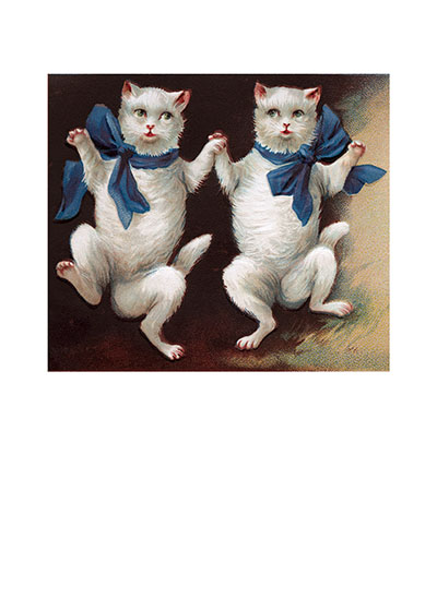 Dancing White Cats These prints are made at our location in Seattle, WA. They have a thick, white backing board and are sealed in clear bags. Each is suitable for framing at 11 inches x 14 inches or can be used as is for wall display. Our goal is to bring back to life these wonderful illustrations from old-fashioned, children's books and from early advertising art.