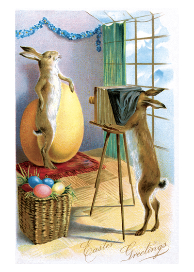 Rabbit Taking Photo | Easter Greeting Cards