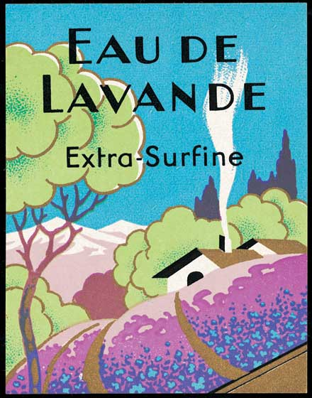Eau De Lavande  BLANK INSIDE  Our blank notecards are custom printed at our location in Seattle, WA. They come bagged with an envelope. We love illustration art from old children's books and early, printed ephemera. These cards reflect this interest in bringing delightful art back to life