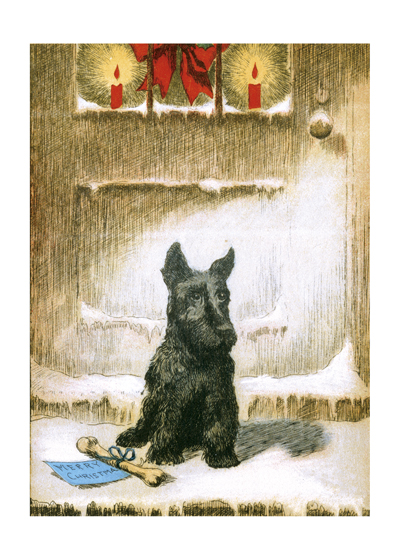 Terrier With A Christmas Bone This Scottish terrier looks a little puzzled about his Christmas bone, but maybe that's because he's been told he has to wait for Christmas to chew it!  These prints are made at our location in Seattle, WA. They have a thick, white backing board and are sealed in clear bags. Each is suitable for framing at 11 inches x 14 inches or can be used as is for wall display. Our goal is to bring back to life these wonderful illustrations from old-fashioned, children's books and from early advertising art.