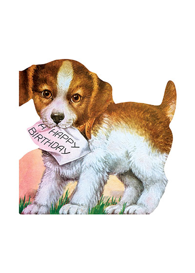Puppy & Birthday Note - Greeting Card (Bagged with Envelope) | Birthday Greeting Cards