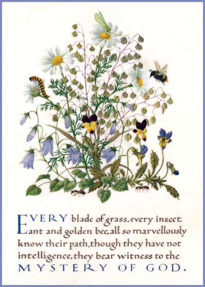 Marie Angel Bee and Flowers | Encouragement Greeting Cards Every blade of grass, every insect, ant, and golden bee, all so amazingly know their path;