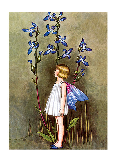 Fairy With Blue Lobelia  BLANK INSIDE  Our greeting cards are custom printed at our location in Seattle, WA. They come bagged with an envelope. We love illustration art from old children's books and early, printed ephemera. These cards reflect this interest in bringing delightful art back to life.  Ida Rentoul Outhwaite (1888 - 1960) was an Australian illustrator of children's books. She was masterful at depicting fairies and the natural world. Her books include Elves and Fairies (1916),  The Enchanted Forest (1921)and Blossom: A Fairy Story (1928).