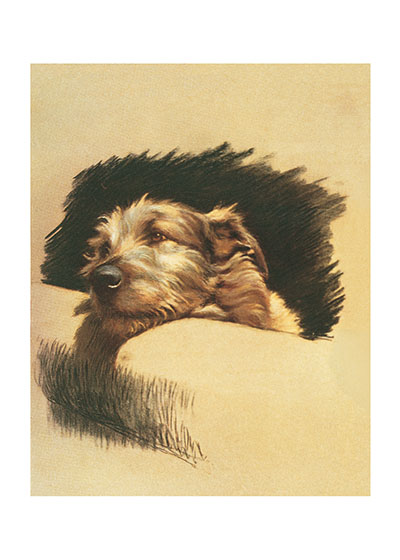 Mickey, the Wolfhound Mickey, the wolfhound, was a favorite dog of the wonderful animal illusrator, Cecil Aldin (1870-1935). Aldin made many paintings and drawings of Mickey, who was one of the dogs who spent their days in his studio, and whom he referred to as his 'board of directors.'  Cecil Aldin (1870-1935) was a prolific English artist and illustrator. While living in London, he became friends with the Beggarstaff Brothers (William Nicholson and James Pryde),  with John Hassall, Phil May and Dudley Hardy, and their influence on his work was great. Aldin, however, developed his own style and was particularly skillful at conveying the humor, love and antics of the dogs and other animal friends. He did a great deal of advertising work, including posters, for such companies as Bovril, Coleman and Cadbury's. Royal Doulton, the china manufacturer, produced about sixty items with Aldin's art between 1910 and 1939. The obituary in {The London Times} asserted that there never yet has been a painter of dogs fit to hold a candle to him.  Cecil Aldin has always been a favorite of ours here at Green Tiger Press, and we have laughed at his wonderful illustrations and reproduced many of them over the years.  Our prints are created by a process named for a French word for spray'.  The inks used in this process have a much higher resistance to fading than lithographic printing inks, which makes this kind of printing particularly suitable for prints being used in wall decor.   These prints are made at our location in Seattle, WA. They have a thick, white backing board and are sealed in clear bags. Each is suitable for framing at 11 inches x 14 inches or can be used as is for wall display. Our goal is to bring back to life these wonderful illustrations from old-fashioned, children's books and from early advertising art.