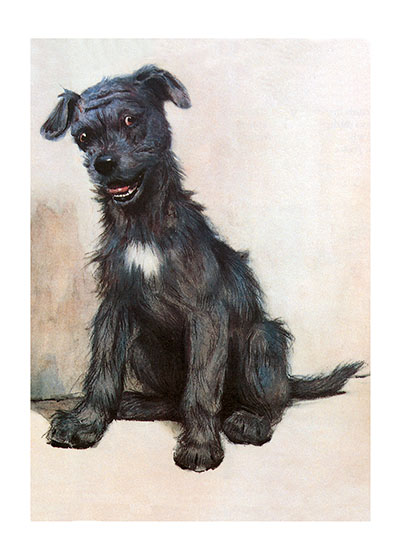 A Gentleman of Character | Cecil Aldin Dog Fun Animals Greeting Cards What kind of gentleman this rascally-looking character is, is a matter for debate!  He looks ready for trouble.