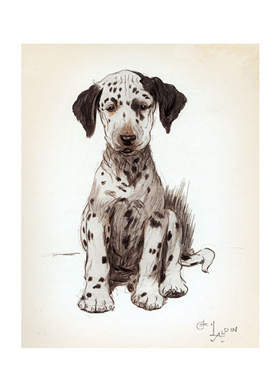 Loopy, the Dalmatian Puppy Aldin's caption for this plate was The Ugly Puppy but that seems a little harsh.  He may be a tad ungainly now, but he's sure to grow up into a handsome Dalmation before long.  From a book entitled {The Artist's Models} 1930, which was a collection of some of the commissioned portraits of dogs that Aldin had done over the years.  People would leave their dogs with Aldin for a while, in which time they became part of the household and gave Aldin an opportunity to study them and thereby create portraits which winningly reflected their personalities. The excellence of these portraits made Aldin much in demand as a pet portraitist.  Cecil Aldin (1870-1935) was a prolific English artist and illustrator. While living in London, he became friends with the Beggarstaff Brothers (William Nicholson and James Pryde), with John Hassall, Phil May and Dudley Hardy, and their influence on his work was great. Aldin, however, developed his own style and was particularly skillful at conveying the humor, love and antics of the dogs and other animal friends. He did a great deal of advertising work, including posters, for such companies as Bovril, Coleman and Cadbury's. Royal Doulton, the china manufacturer, produced about sixty items with Aldin's art between 1910 and 1939. The obituary in {The London Times} asserted that there never yet has been a painter of dogs fit to hold a candle to him.  Cecil Aldin has always been a favorite of ours here at Green Tiger Press, and we have laughed at his wonderful illustrations and reproduced many of them over the years.  These prints are made at our location in Seattle, WA. They have a thick, white backing board and are sealed in clear bags. Each is suitable for framing at 11 inches x 14 inches or can be used as is for wall display. Our goal is to bring back to life these wonderful illustrations from old-fashioned, children's books and from early advertising art.