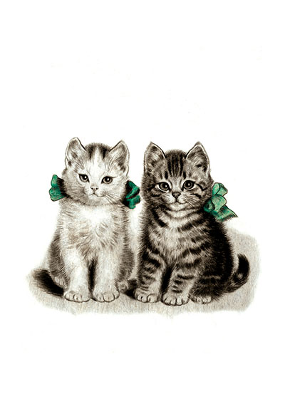"Adorable Kittens Friendship | Friendship Greeting Cards ""These sweet kittens are the perfect friendship card, especialy for any cat lovers."