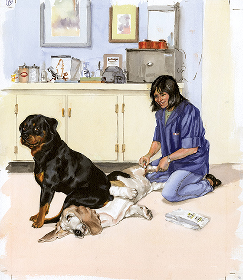 Carl Sitting on a Basset Hound (Signed) These prints are made at our location in Seattle, WA. They have a thick, white backing board and are sealed in clear bags. Each is suitable for framing at 11 inches x 14 inches or can be used as is for wall display. This image comes from the book Carl Goes Shopping.  This print is signed by Alexandra Day and with a stamp-print of the real Carl's paw.