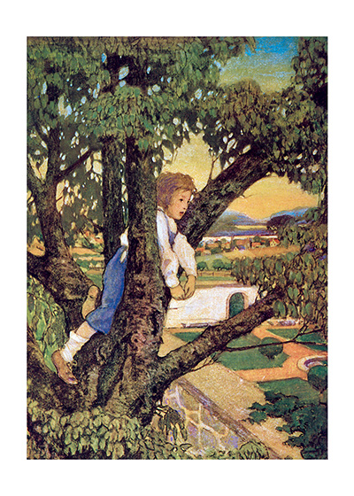 A Boy Observing the World From A Tree  BLANK INSIDE  Our blank notecards are custom printed at our location in Seattle, WA. They come bagged with an envelope. We love illustration art from old children's books and early, printed ephemera. These cards reflect this interest in bringing delightful art back to life