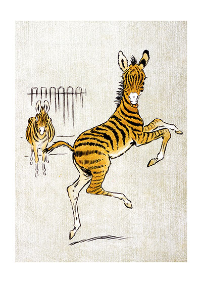 Dancing Zebra These prints are made at our location in Seattle, WA. They have a thick, white backing board and are sealed in clear bags. Each is suitable for framing at 11 inches x 14 inches or can be used as is for wall display. Our goal is to bring back to life these wonderful illustrations from old-fashioned, children's books and from early advertising art.