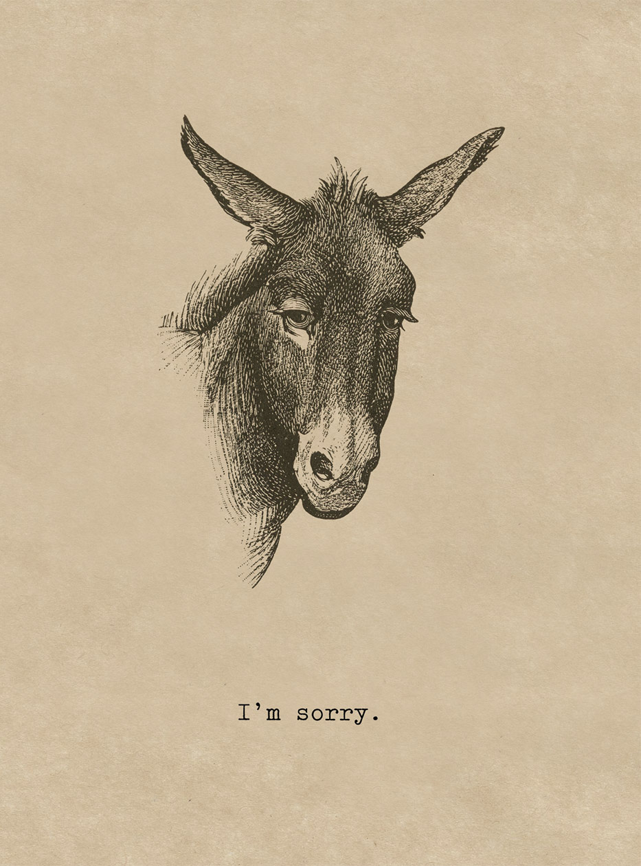 Sorry Donkey  OUTSIDE GREETING: I'm Sorry  BLANK INSIDE  A 19th century donkey engraving humorously conveys regret. A friendship greeting card from Cory Steffen