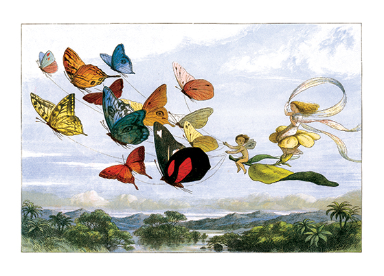 Fairy Flight with Butterflies  BLANK INSIDE  Our notecards are custom printed at our location in Seattle, WA. They come bagged with an envelope. We love illustration art from old children's books and early, printed ephemera. These cards reflect this interest in bringing delightful art back to life.