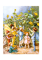 Fairy Orchestra (Fairyland Fairies Art Prints)