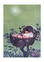 Baby in Treetops (Baby Art Prints)