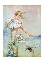 A Fairy Princess (Fairyland Fairies Greeting Cards)