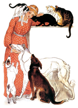 Lady and Animals (Women Greeting Cards)