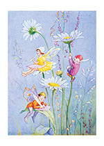 Little Fairies Among the Daisies