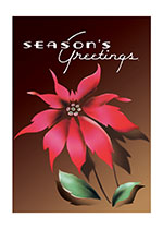 Season's Greetings Poinsettia (Many More Christmas Greeting Cards)