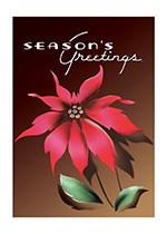 Season's Greetings Poinsettia