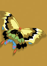 Art Deco Yellow Butterfly