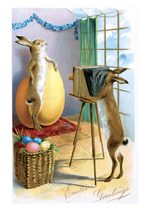 Rabbit Taking Photo (Easter Greeting Cards)
