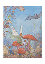 The Fairies are Surprised By a Bat (Fairyland Fairies Greeting Cards)