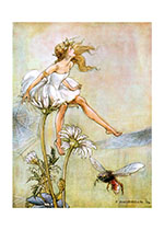 Fairy Maiden Sitting Atop a Daisy (Fairyland Fairies Art Prints)