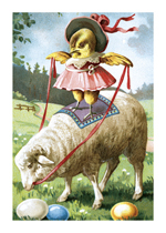 Chick Ridiing Sheep (Easter Greeting Cards)
