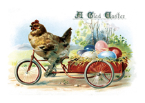 Chicken Hauling Eggs (Easter Greeting Cards)