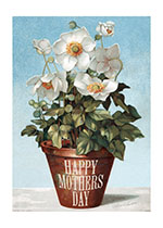 Potted White Flowers (Mother's Day Greeting Cards)