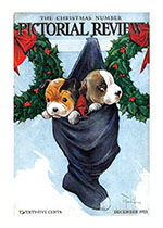 Puppies in a Christmas Stocking (Magazine Covers Christmas Greeting Cards)
