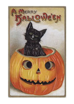 A Black Cat in a Jack-O-Lantern (Classic Halloween Art Prints)