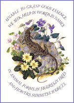 Marie Angel Lizard (Encouragement Greeting Cards)