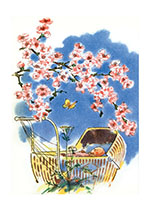 Baby With Cherry Blossoms (Baby Greeting Cards)
