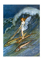 Fairy Riding Fish (Ida R. Outhwaite Fairies Greeting Cards)