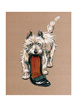 Mac Steals a Slipper (Cecil Aldin Dog Fun Animals Art Prints)