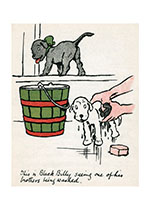 Black Billy Is Not So Sure about Baths (Cecil Aldin Dog Fun Animals Greeting Cards)
