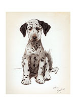 Loopy, the Dalmatian Puppy (Cecil Aldin Dog Fun Animals Art Prints)