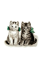 Adorable Kittens (Captivating Cats Animals Art Prints)
