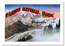 Rainier National Park Postcard
