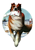 A Collie Bringing Valentines (Magazine Art Valentine's Day Greeting Cards)