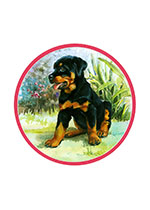 Puppy Carl (Good Dog, Carl Greeting Cards)