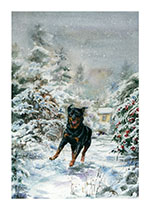 Carl Jumping in the Snow (Good Dog, Carl Greeting Cards)