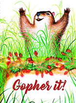 Happy Gopher (Birthday Greeting Cards)