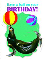Seal & Two Balls (Birthday Greeting Cards)